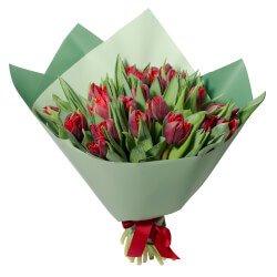 Букет из 21 красного пионовидного тюльпана в упаковке в Санкт-Петербурге