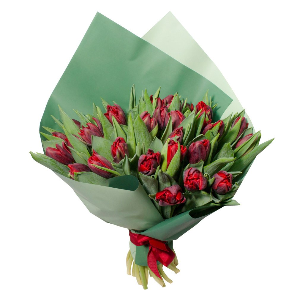 Букет из 31 красного пионовидного тюльпана в упаковке в Санкт-Петербурге