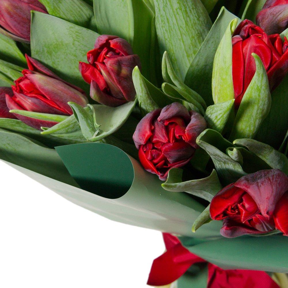 31 красный пионовидный тюльпан в упаковке