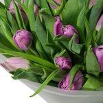 Букет из 51 сиреневого пионовидного тюльпана в упаковке в Санкт-Петербурге