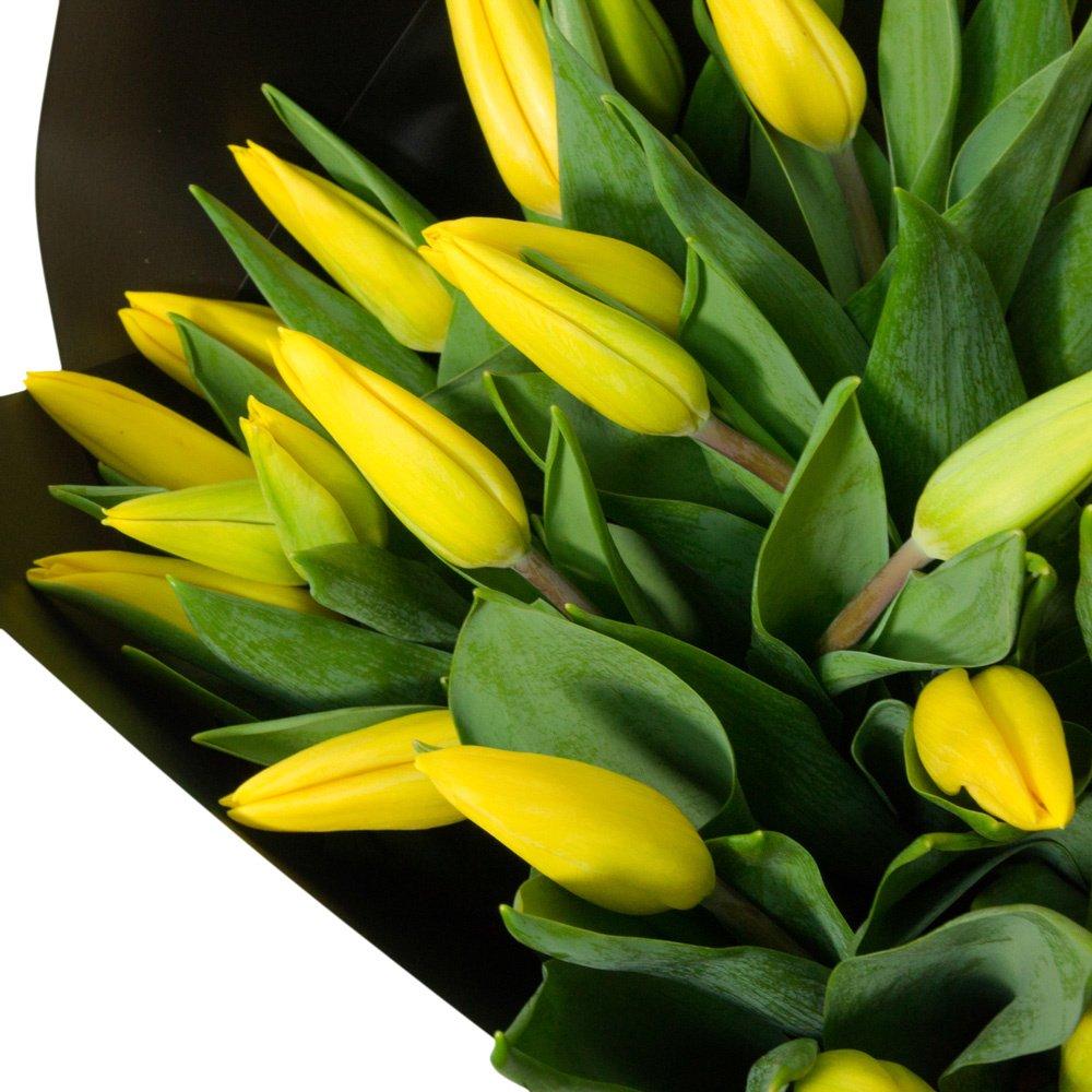 31 жёлтый тюльпан в упаковке