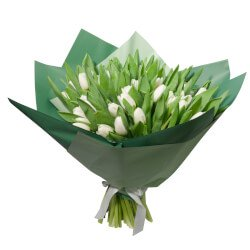 Букет из 51 белого тюльпана в упаковке в Санкт-Петербурге