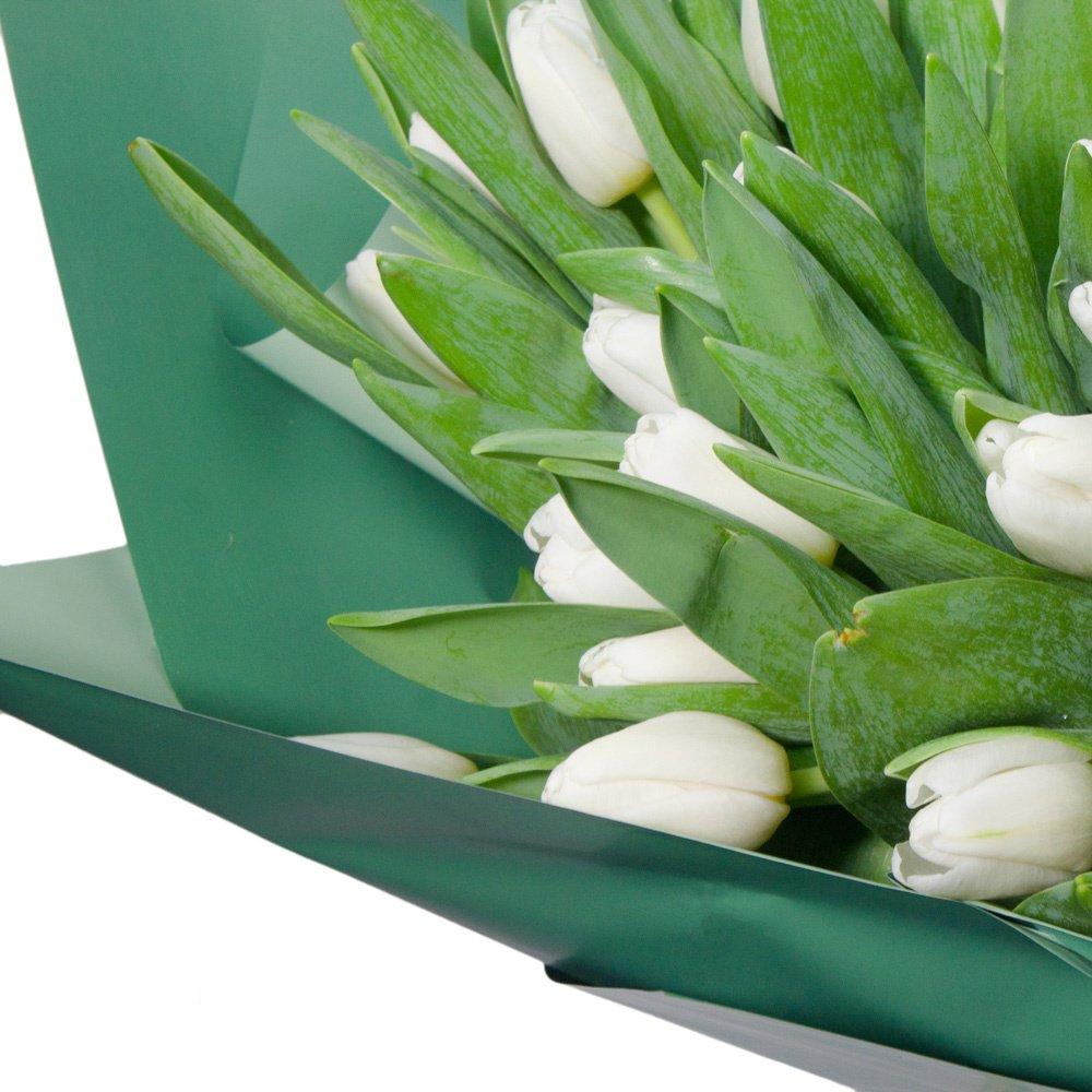51 белый тюльпан в упаковке