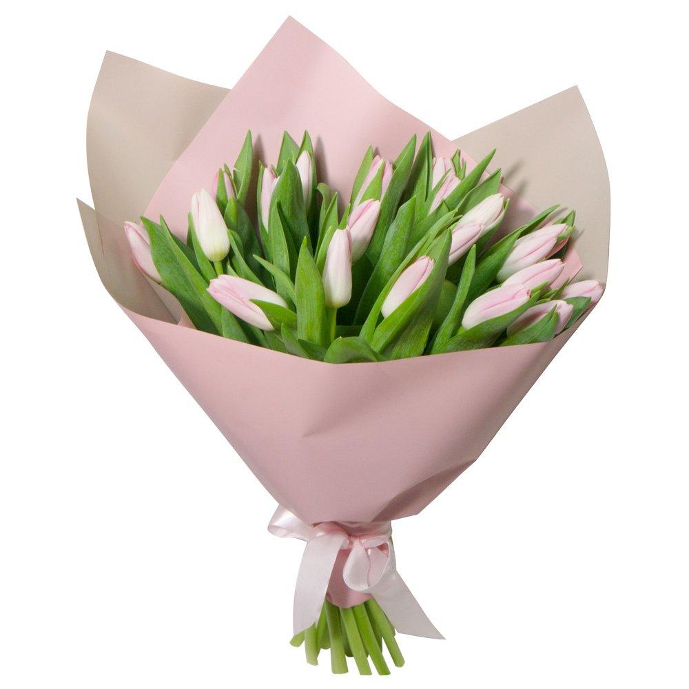 Букет из 25 розовых тюльпанов в упаковке с доставкой купить в Санкт-Петербурге