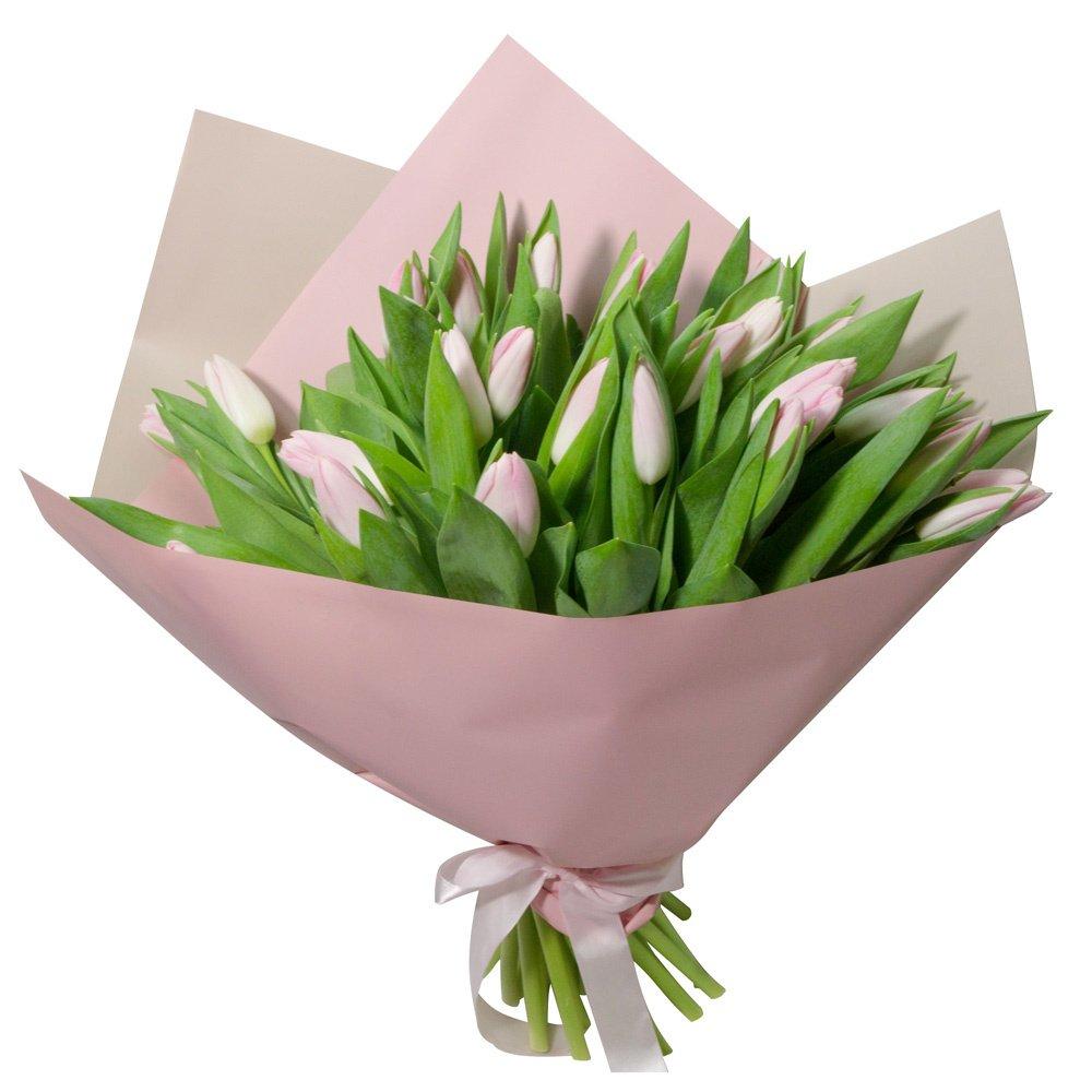 Букет из 31 розового тюльпана в упаковке в Санкт-Петербурге