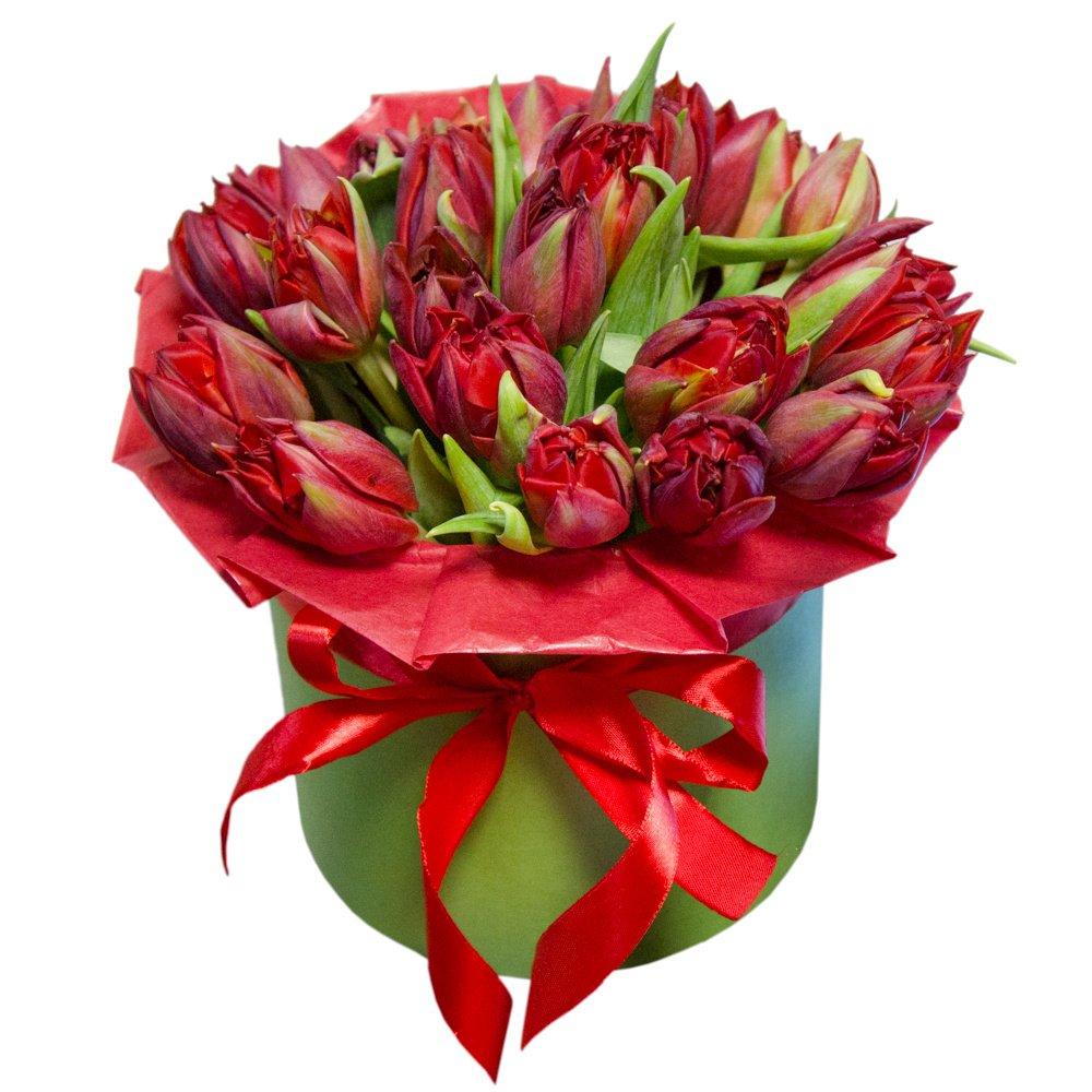 Роза кустовая розовая
