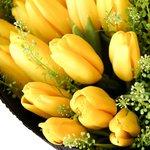 Букет из 25 жёлтых тюльпанов с гринбеллом в упаковке в Санкт-Петербурге