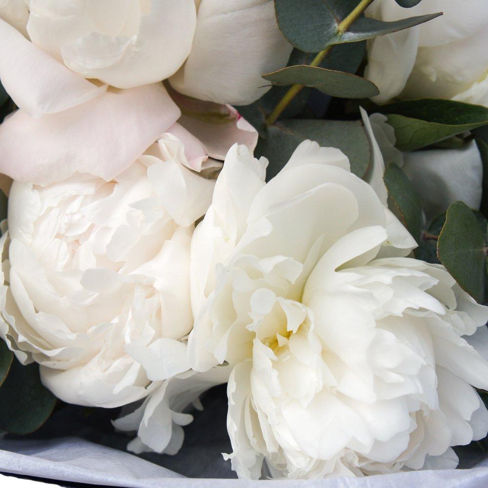Белые пионы в яркой упаковке
