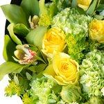 Ярко-зелёный букет с жёлтыми розами, орхидеями, мятными гвоздиками и диантусом в стильной чёрной упаковке в Санкт-Петербурге