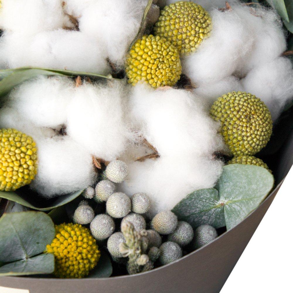 Хи: хлопок, краспедия и листья эвкалипта