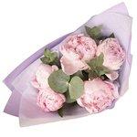 Купить розовые пионы с эвкалиптом в упаковке в Санкт-Петербурге