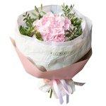 Розовая гортензия в упаковке в Санкт-Петербурге
