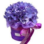 Фиолетовая гортензия в шляпной коробке в Санкт-Петербурге