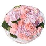 Букет из розовых гортензий и розовых гвоздик в упаковке в Санкт-Петербурге
