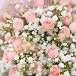 Воздушный букет из гипсофилы и розовой кустовой розы в Санкт-Петербурге