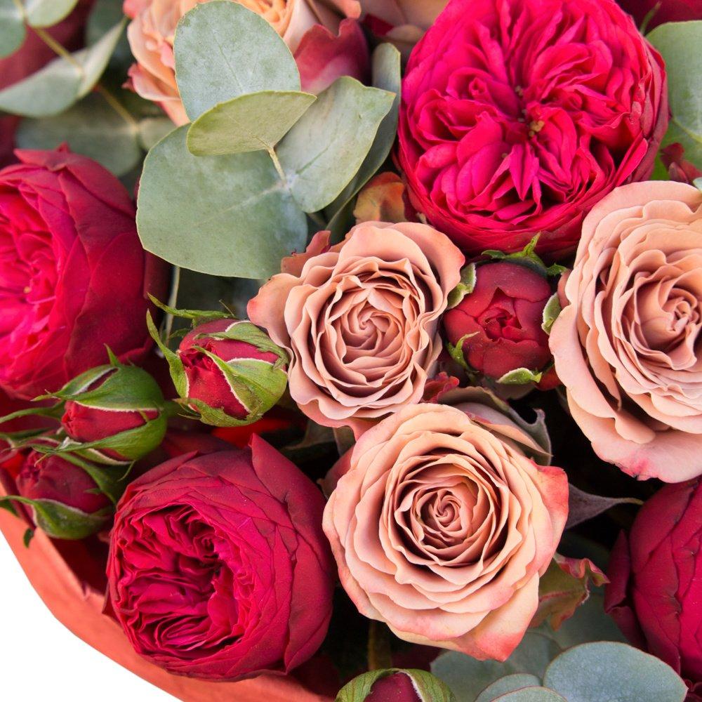 Катрин Денёв: пионовидные розы Рэд Пиано и розы Капучино