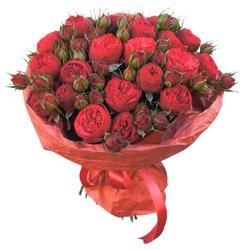 Пионовидная роза Рэд Пиано в упаковке в Санкт-Петербурге