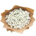Букет белая кустовая хризантема в Санкт-Петербурге