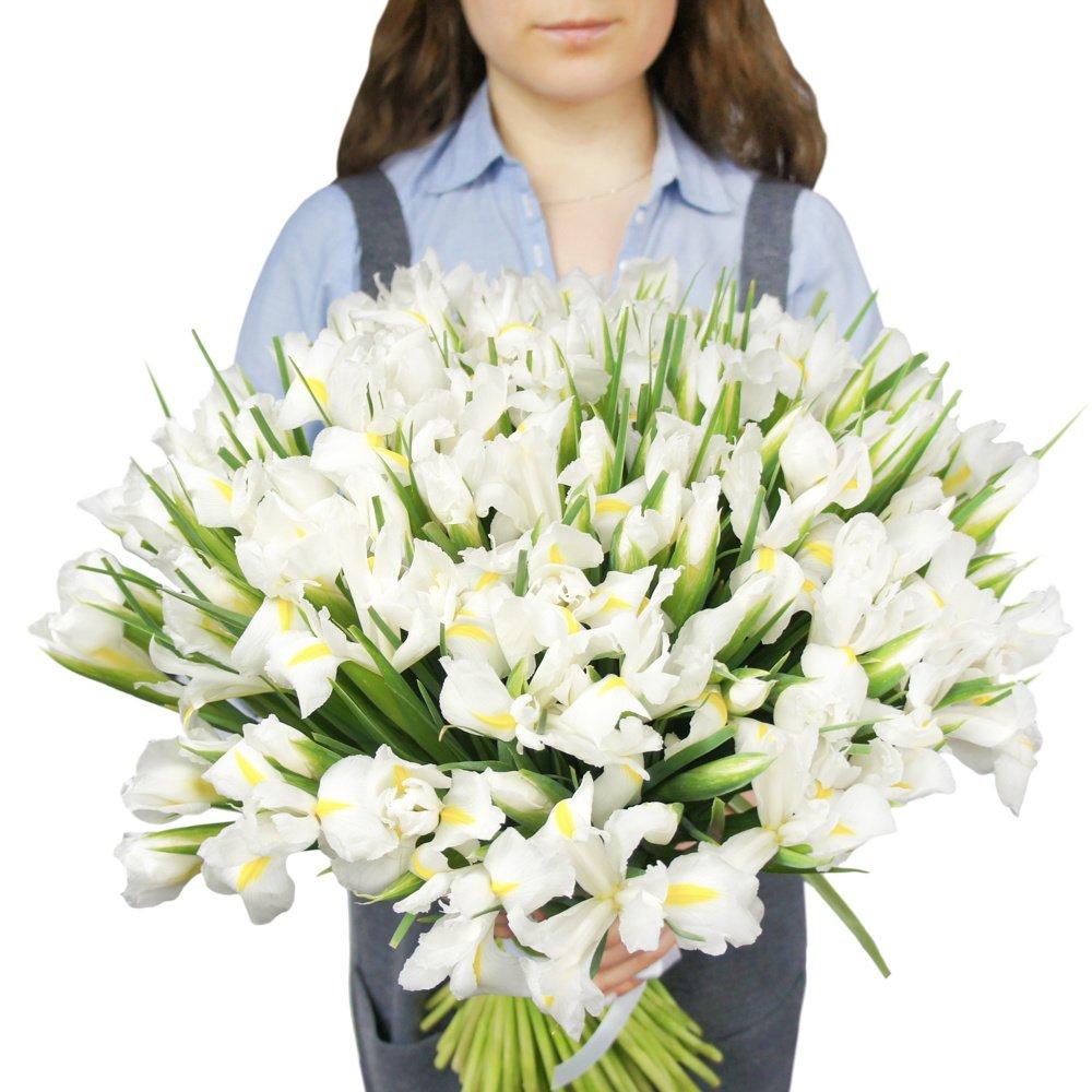 Букет 101 белый ирис  Ирис белый Заказать букет с доставкой Доставка цветов в Санкт-Петербурге