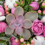 Уютная композиция в кашпо ручной работы розового цвета с сердечком в Санкт-Петербурге