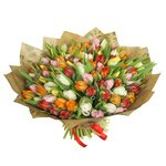 Букет из 101 разноцветного тюльпана с доставкой в Санкт-Петербурге