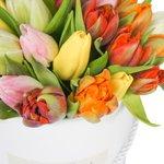 Разноцветные тюльпаны в шляпной коробке в Санкт-Петербурге