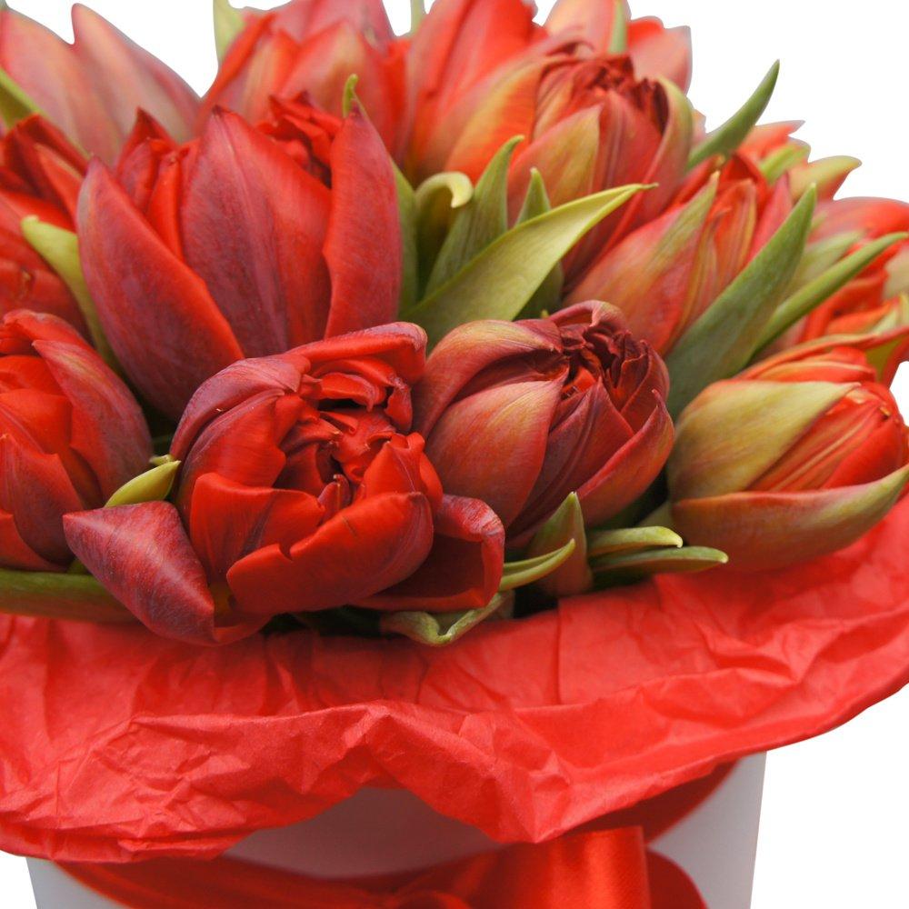 Белла: красные пионовидные тюльпаны в белой шляпной коробке