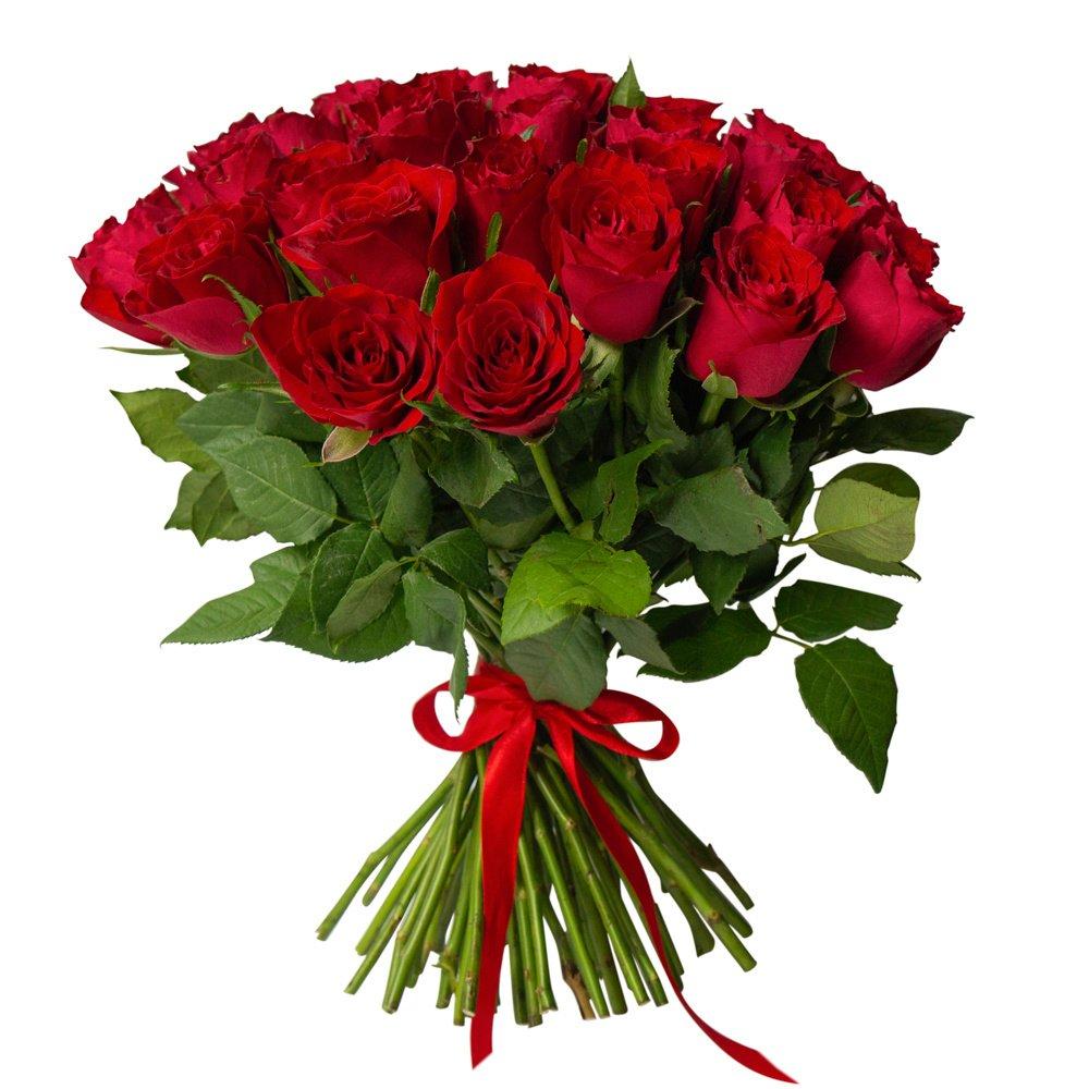 Роза Кения красная 51 штука