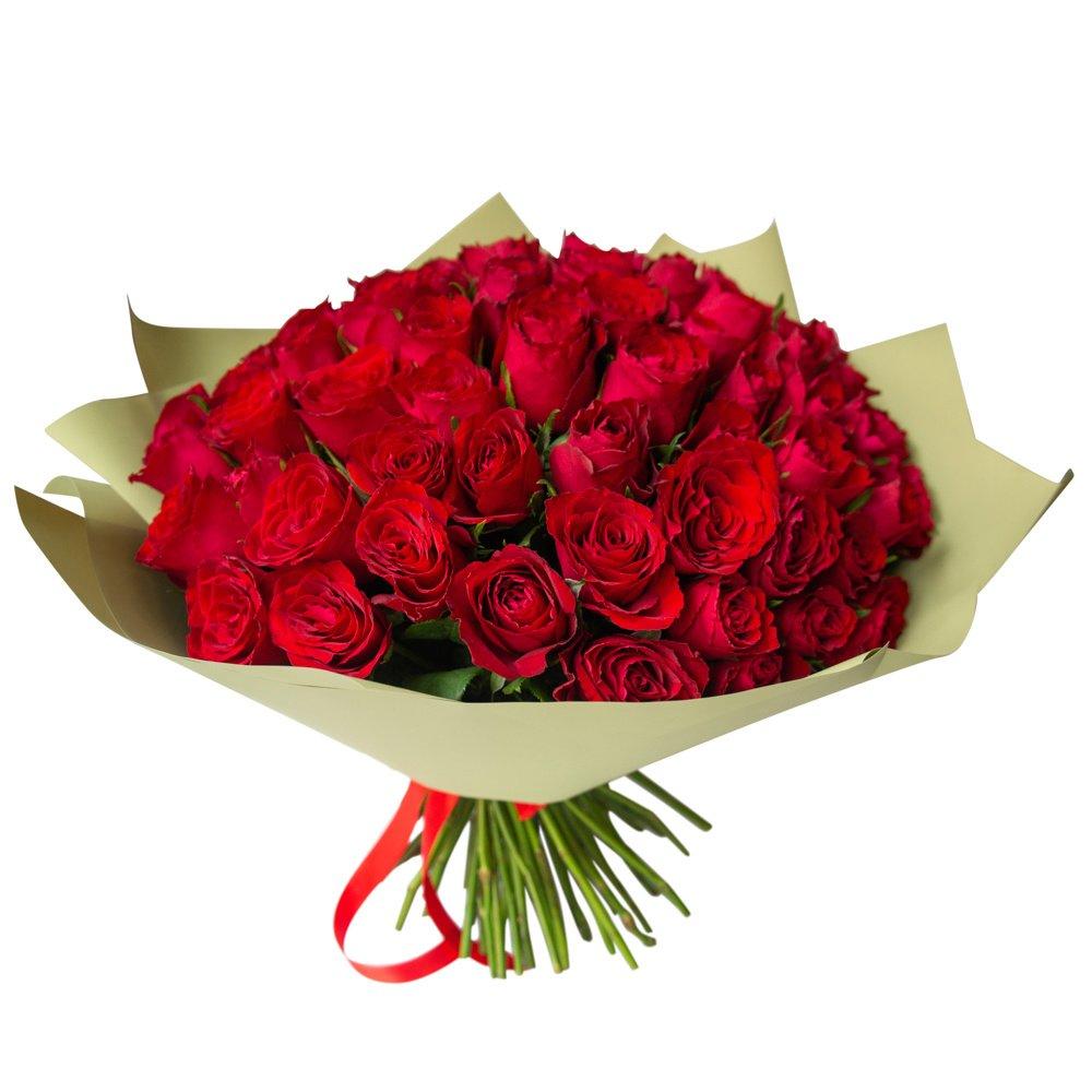 Роза Кения красная 75 штук в упаковке