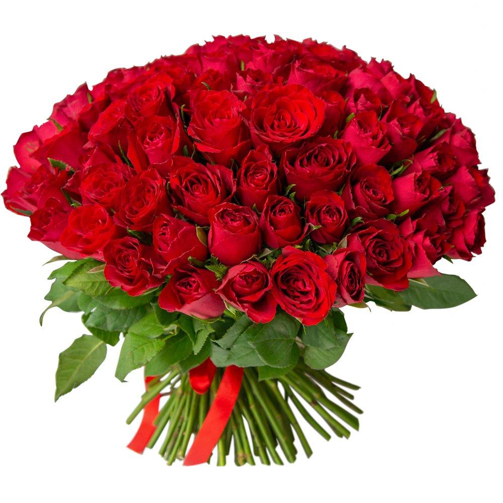 Роза Кения красная 101 штука