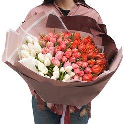Букет омбрэ из 125 тюльпанов в упаковке в Санкт-Петербурге