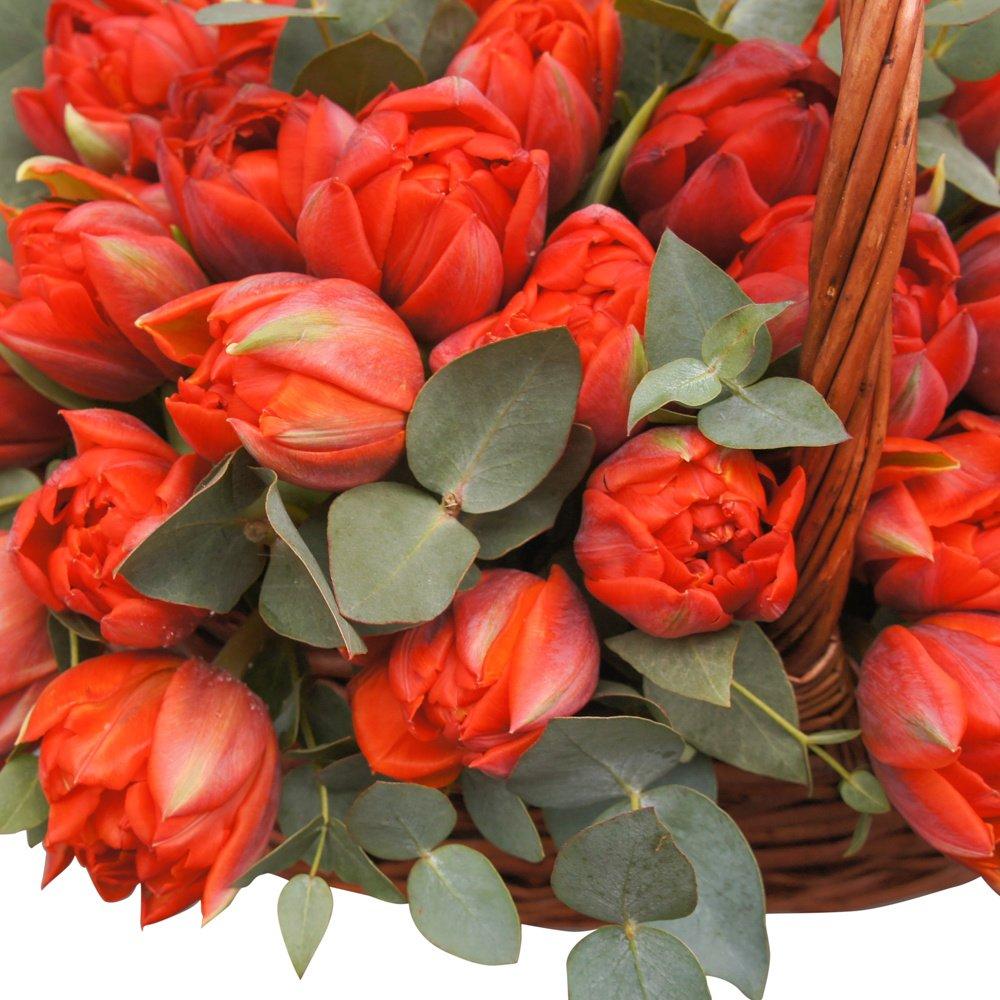 Корзина с красными тюльпанами мини