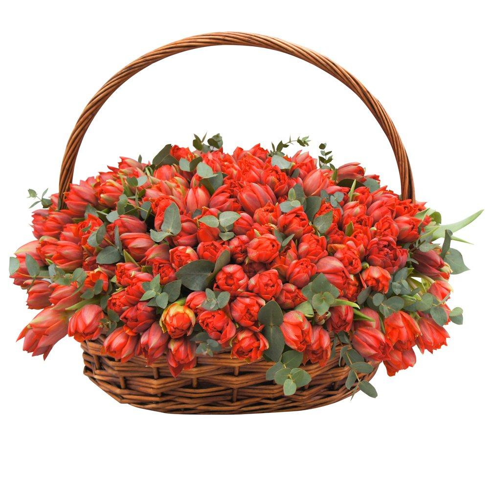 Корзина с красными тюльпанами макси