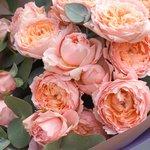 Пионовидные кустовые розы Джульетта с эвкалиптом в упаковке в Санкт-Петербурге