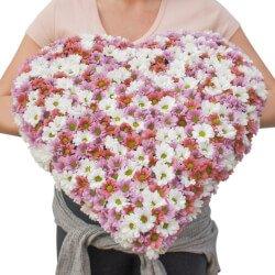 Купить цветы в виде сердца из хризантемы в Санкт-Петербурге