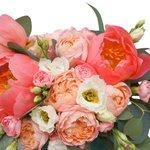 Коралловые пионы, кустовая пионовидная роза Джульетта, лизиантус и гвоздика в бархатной шляпной коробке в Санкт-Петербурге