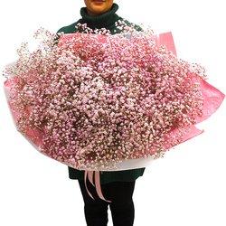 Большой букет из розовой гипсофилы в Санкт-Петербурге