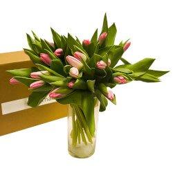Букет розовые тюльпаны с вазой в Санкт-Петербурге