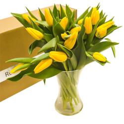 Букет жёлтые тюльпаны с вазой в Санкт-Петербурге
