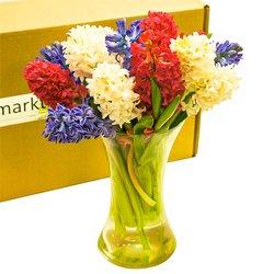 Букет разноцветные гиацинты, цветы в коробке с вазой в Санкт-Петербурге