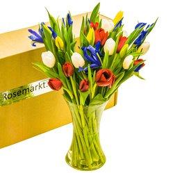 Букет синие ирисы и разноцветные тюльпаны с вазой в Санкт-Петербурге